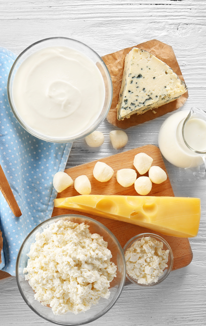 dishes of different cheeses and dairy products