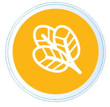 organic products icon